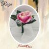 594-1 roza